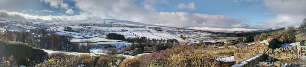 2012-11-19-pasture-houses-panorama